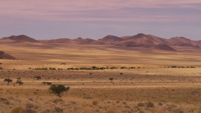 landscape in nambia - namibia stock videos & royalty-free footage