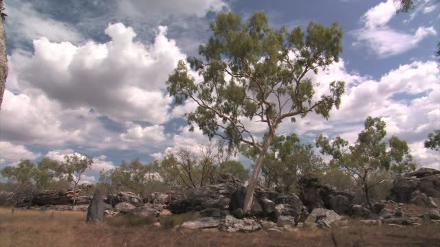 landscape in the kimberley plateau, western australia - plateau stock videos and b-roll footage