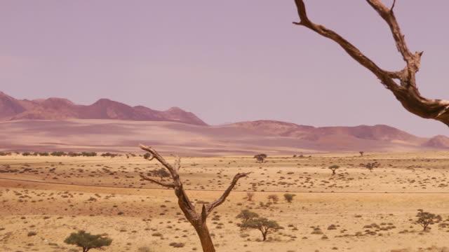 Landscape in the Namib Desert