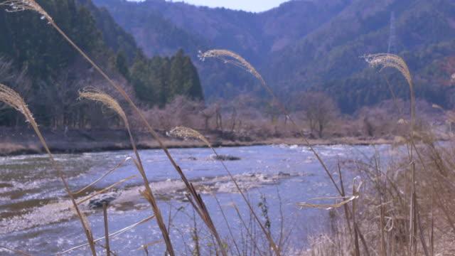 landscape mountain behide river at miyama, kyoto - miyama kyoto stock videos & royalty-free footage