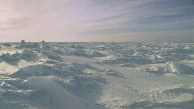 stockvideo's en b-roll-footage met landscape of antarctica - antarctica