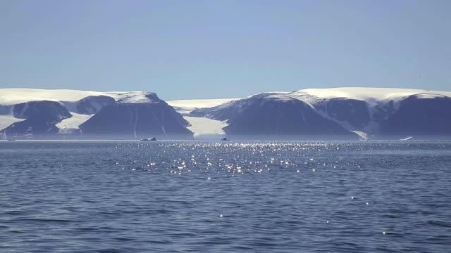 vídeos de stock, filmes e b-roll de landscape of arctic ocean and north pole in summer - ponto de referência natural
