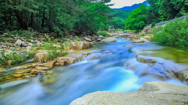 landscape of baekdam valley in inje, gangwon province in south korea in summer - fels stock-videos und b-roll-filmmaterial