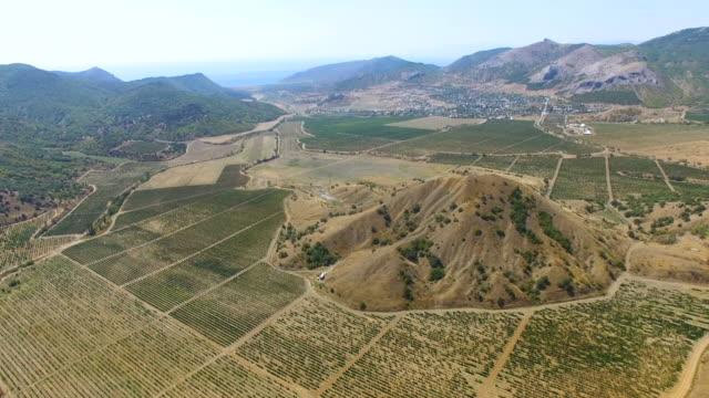 vídeos y material grabado en eventos de stock de antena: paisaje de tierras agrícolas con viñedos - multicóptero