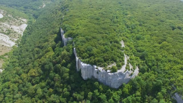 AERIAL: Landscape of forest plateau in mountains