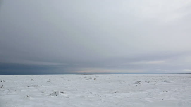 landscape of glacier and ice sheet in churchill, canada - arctic stock videos and b-roll footage