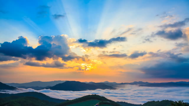 ws t/l landscape of highland chinese cabbage field in anbandeok village at sun rising with clouds and hills / gangneung, gangwon do, south korea - crucifers stock videos and b-roll footage