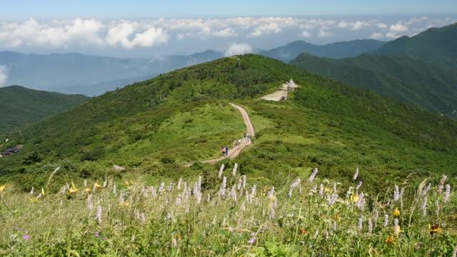 vídeos de stock, filmes e b-roll de landscape of nogodan peak in jirisan mountain / jeollanam-do, south korea - colina