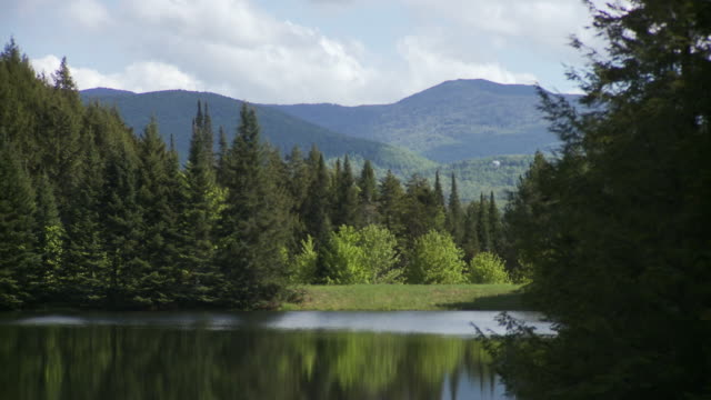 WS Landscape of scenic lake surrounded by lush green forest and mountains, Morristown, Vermont, USA