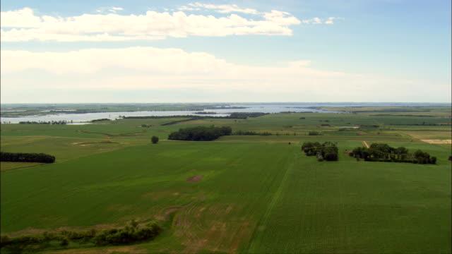 paesaggio delle piccole aziende agricole-vista aerea-south dakota, hamlin county, stati uniti - dakota del sud video stock e b–roll