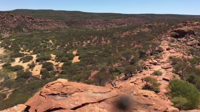 landscape of the mid west of western australia - outback stock videos & royalty-free footage