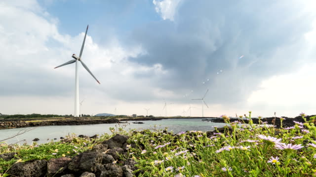 Landscape of Vertical axis wind turbine at wind power station near coastal feature with flower bed
