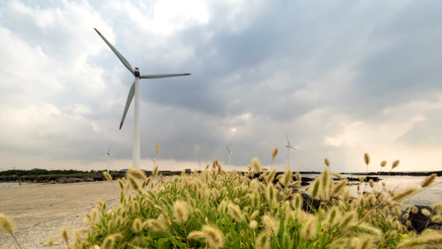 landscape of vertical axis wind turbine at wind power station near coastal feature with sawgrass - coastal feature stock-videos und b-roll-filmmaterial