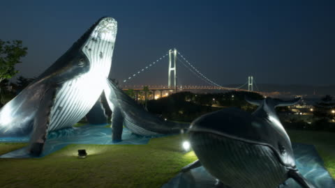 landscape of whale statues at jangsaengpo whale square and ulsandaegyo bridge in ulsan, korea from sunset to night - sculpture stock videos & royalty-free footage