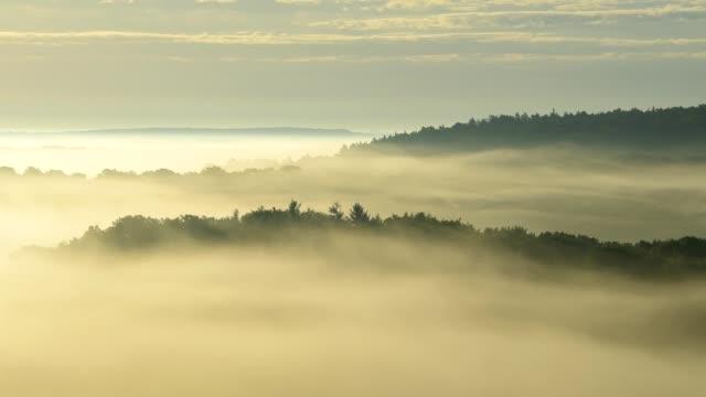Landscape on misty morning, Höhefeld, Wertheim, Baden-Wurttemberg