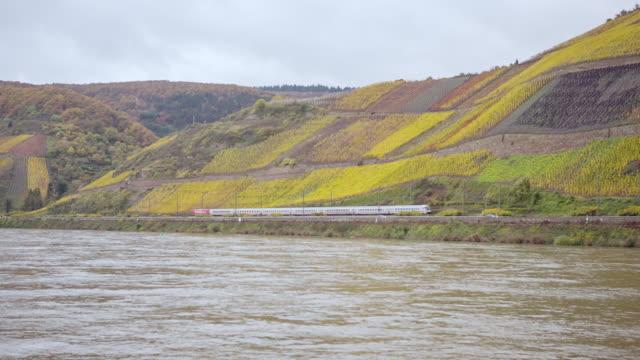 WS POV Landscape on shore of River Rhein, Vineyards of Loreley, Train passing by / Koblenz, Germany