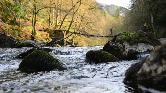 landscape shot of flowing river. general views of river allen on may 10, 2013 in hexham, england - sheep stock videos & royalty-free footage
