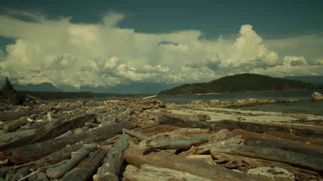 stockvideo's en b-roll-footage met landscape - drijfhout