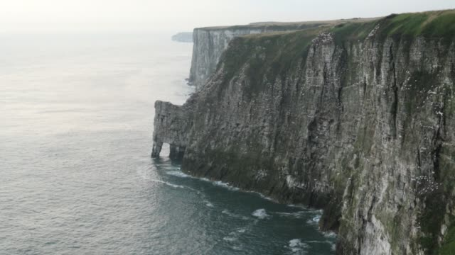 vidéos et rushes de a landscape view of bempton cliffs in yorkshire, uk, where thousands of seabirds breed on the cliffs. - terre en vue