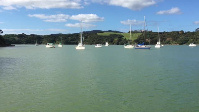 Landscape view of sail boats mooring at mill bay at the north Island of New Zealand