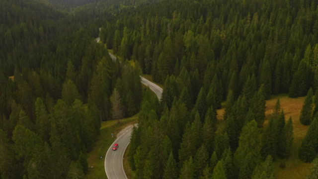 ws aerial view landscape view treetops and winding road below mountains, dolomites, italy - accessibility stock videos & royalty-free footage