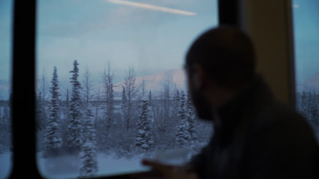 Landscape viewed from train - push in