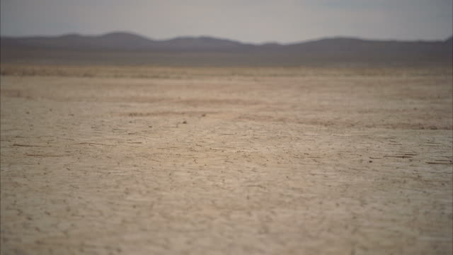 ws r/f landscape with cracks on arid desert / mojave, california, usa - lake bed stock videos & royalty-free footage