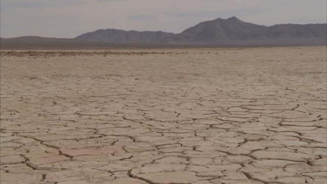 ws landscape with cracks on arid desert / mojave, california, usa - deserto mojave video stock e b–roll