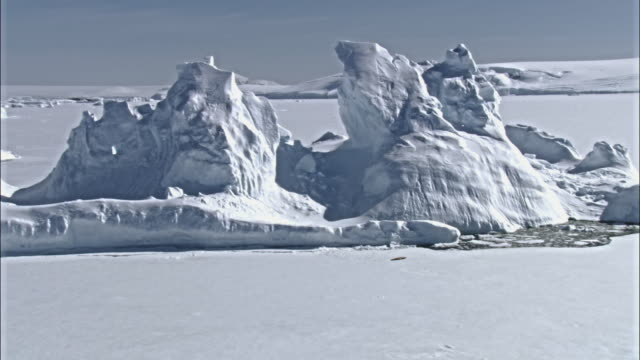 Landscape with icebergs
