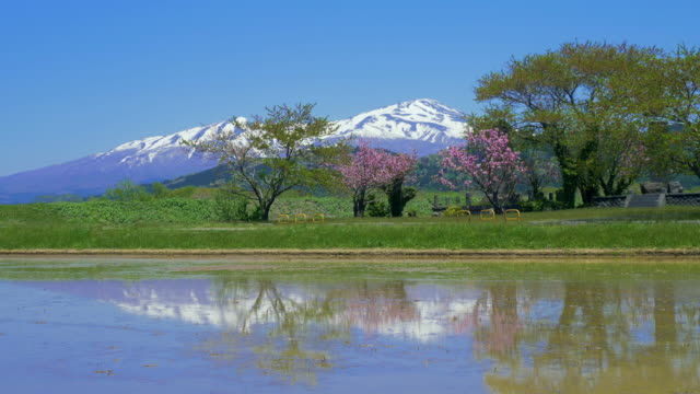 ws landscape with mount chokai and lake, yamagata prefecture, japan - 鳥海山点の映像素材/bロール