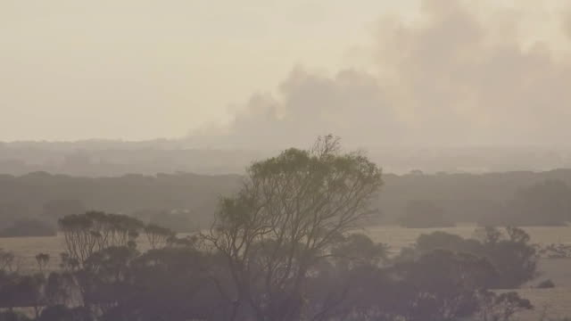 landscape with smoke from fires on kangaroo island in australia. - environment or natural disaster or climate change or earthquake or hurricane or extreme weather or oil spill or volcano or tornado or flooding stock videos & royalty-free footage