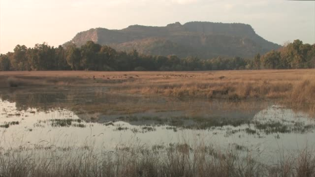 landscape with water and mountain. - madhya pradesh stock videos and b-roll footage