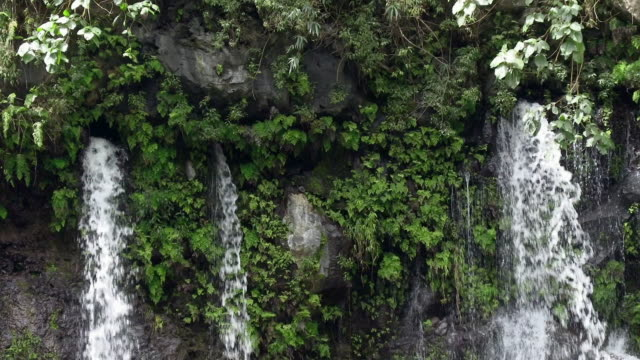 ws landscape with waterfall, reunion island - french overseas territory stock videos & royalty-free footage