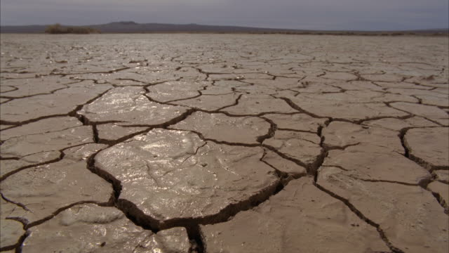 ws landscape with wet cracks on arid desert / mojave, california, usa - drought stock videos and b-roll footage