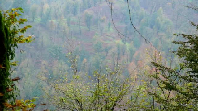 landschaft des kaukasus (aserbaidschan - kaukasus geografische lage stock-videos und b-roll-filmmaterial