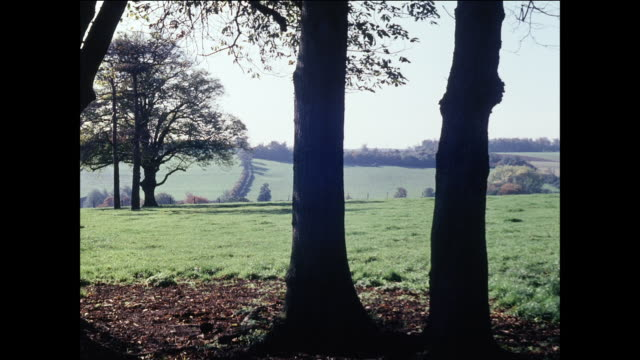 MONTAGE Landscapes of the British countryside / UK