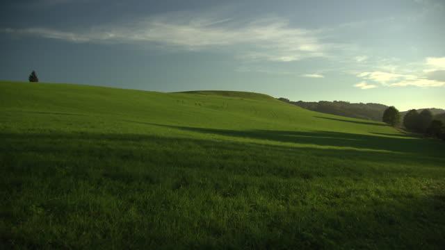landschaftsaufnahmen - country field in gebertshum 03 - rolling landscape stock videos & royalty-free footage