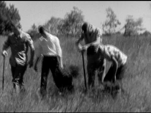 laneburg h.s. students ploughing & planting new trees , sowing, on grass field. plowing, reforestation, reforesting, nevada county, arkansas, ar - 木材産業点の映像素材/bロール