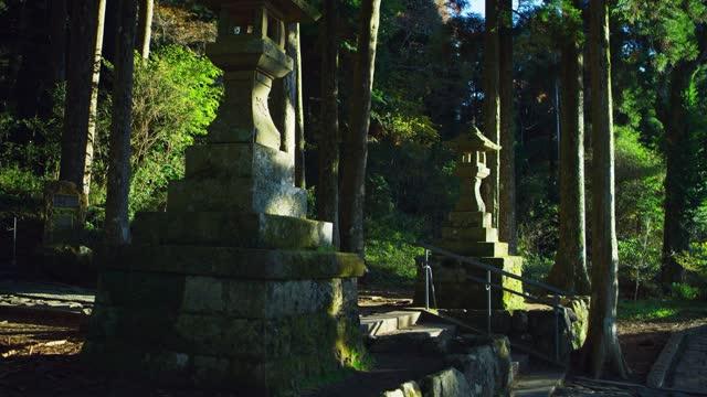 lantern statues in lakeside forest, japan - schrein stock-videos und b-roll-filmmaterial