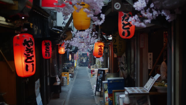 lanterns and cherry blosson in empty yakitori alley - giappone video stock e b–roll