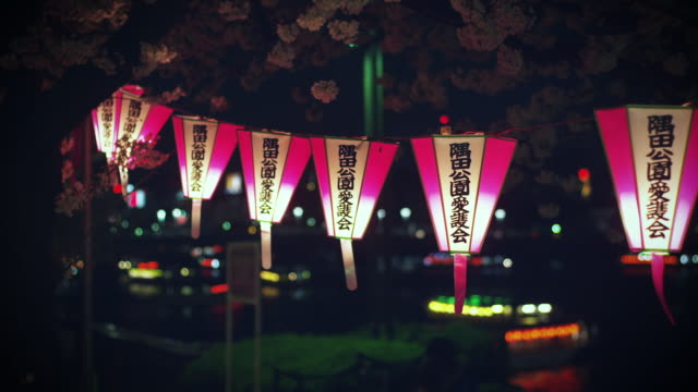 lanterns swinging with breeze with cherry blossoms at night - ランプ点の映像素材/bロール