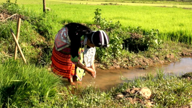 laos hmong washing hands in nature - laos stock videos & royalty-free footage