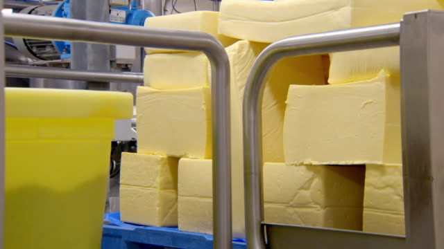 large blocks of cheese in a factory - チェダー点の映像素材/bロール