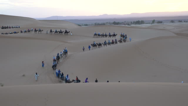 a large caravan of camels with tourist moving into the dunes of erg chebbi at sunset, saharan morocco - sahara desert stock videos & royalty-free footage