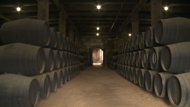 A large cellar stores a number of wooden barrels in Andalusia.