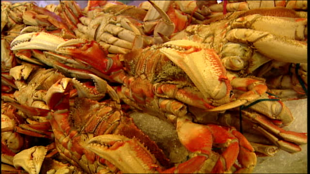 cu large crabs on display at pike place fish market in seattle washington - pike place market stock videos and b-roll footage