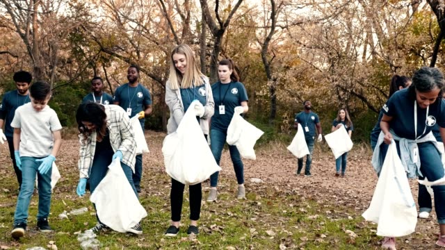 large diverse group of people cleaning up their community - pulizia dell'ambiente video stock e b–roll