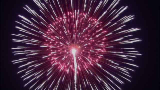 ms, large firework against black sky - firework display stock videos & royalty-free footage