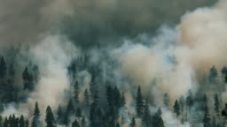 Large forest fire climbing up mountain in Montana
