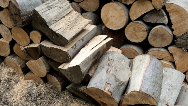 large forestry wood pile - sawdust stock videos and b-roll footage
